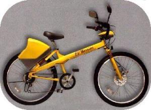 The EV-1 model